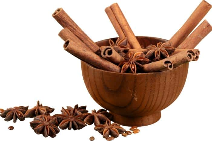 Cinnamon as an Antibiotic