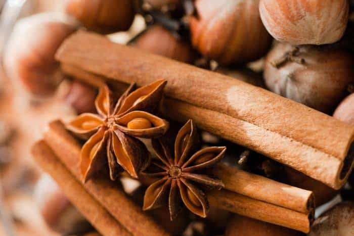 Cinnamon for Gastritis