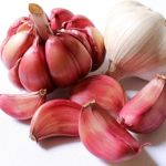 Garlic Can Help if You Are Overweight