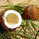 Coconut is Bad for Health and Body Weight