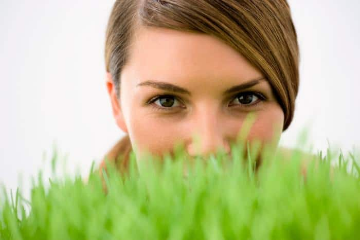 Wheatgrass Benefits in Diabetes